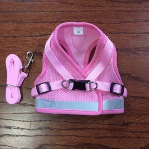 Accessories - NWOT doggie harness and leash
